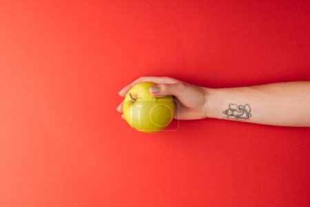 Photo for Top view of tattooed female hand holding large golden delicious apple on red background - Royalty Free Image