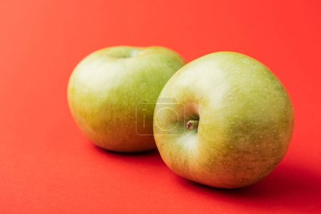 ripe large green apples on red background
