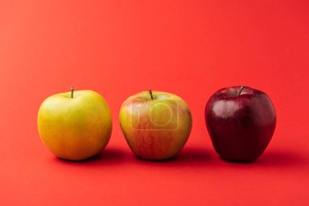 Photo for Row of three ripe multicolored apples on red background - Royalty Free Image