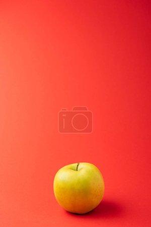 Foto de Gran manzana deliciosa dorada sobre fondo rojo - Imagen libre de derechos