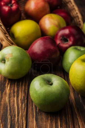 Photo for Wicker basket with scattered multicolored apples on wooden table - Royalty Free Image