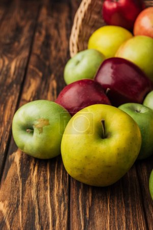 Photo for Wicker basket with scattered yellow, green and red apples on wooden table - Royalty Free Image