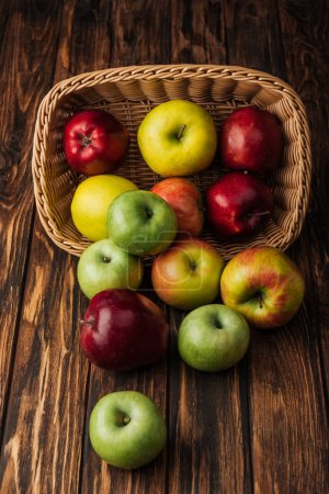 wicker basket with scattered ripe apples on rustic wooden table
