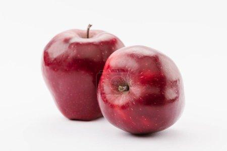 Photo pour Mûres grosses pommes délicieuses rouges sur fond blanc - image libre de droit
