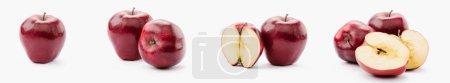 Foto de Collage de todo y a la mitades las manzanas deliciosas rojo sobre fondo blanco - Imagen libre de derechos