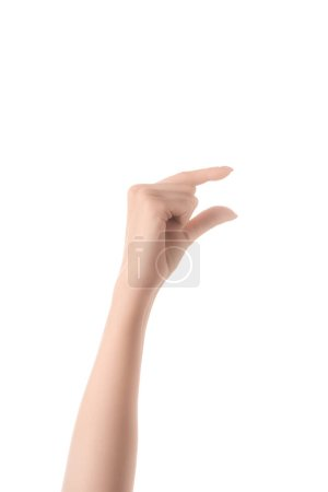 Photo for Cropped view of woman showing size gesture with hand isolated on white - Royalty Free Image