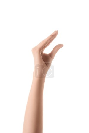 cropped view of woman showing size gesture with hand isolated on white