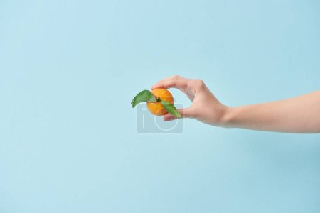 cropped view of woman holding tasty tangerine in hand isolated on blue