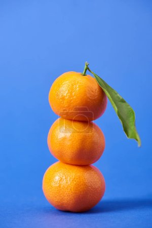 Photo pour Juteuses tangerines organiques avec feuille de zeste et vert sur fond bleu - image libre de droit