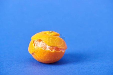 Photo pour Pelées bio mandarine avec entrain sur fond bleu - image libre de droit