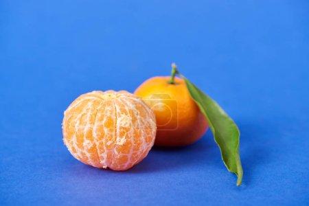 Photo pour Mandarine biologique pelée près de clémentine avec zeste sur fond bleu - image libre de droit