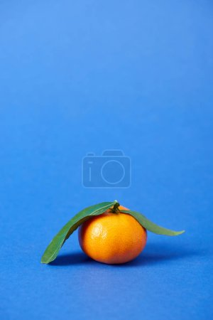 Photo for Juicy organic tangerine with zest and green leaves on blue background - Royalty Free Image