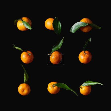 Photo pour Tangerines orange savoureuses avec des feuilles vertes isolées sur fond noir - image libre de droit