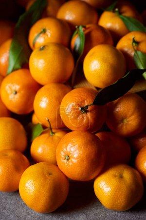 Photo pour Mise au point sélective de douces orange mandarines avec feuilles vertes - image libre de droit