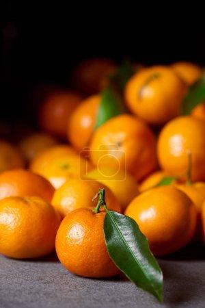 Photo pour Mise au point sélective de doux mandarine orange près de clémentines avec feuilles vertes - image libre de droit