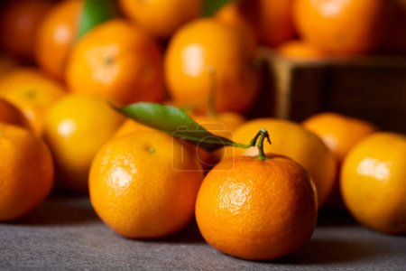Photo pour Mise au point sélective de douce Clémentine orange près de mandarines aux feuilles vertes - image libre de droit