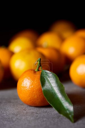 Photo for Selective focus of sweet clementine near tangerines with green leaf - Royalty Free Image