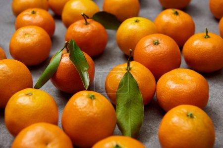 Photo pour Mise au point sélective de tangerines orange avec des feuilles vertes sur table gris - image libre de droit