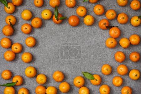 Photo pour Vue de dessus du douces tangerines organiques avec des feuilles vertes sur table gris - image libre de droit