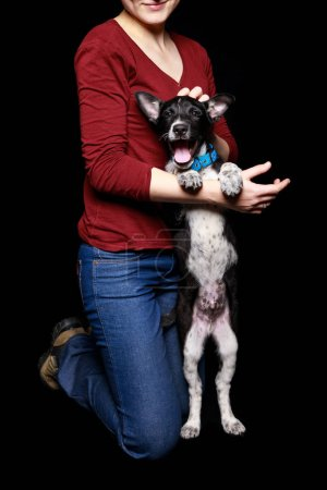 Photo pour Vue recadrée de la femme en jean et pull rouge avec chien dans le collier sur les pattes arrière isolé sur noir - image libre de droit