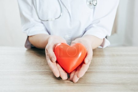 cropped view of doctor in white coat holding plastic heart