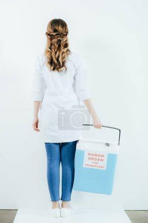 Photo pour Vue arrière du docteur dans le seau de fixation de manteau blanc pour la transplantation isolée sur le blanc - image libre de droit