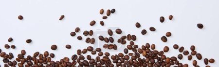 Photo for Panoramic shot of scattered brown roasted beans on white background - Royalty Free Image