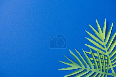 Foto de Top view of green paper cut leaves on blue background with copy space - Imagen libre de derechos