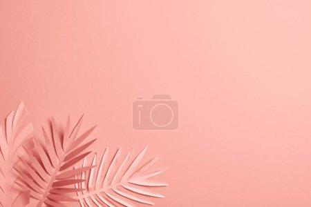 Foto de Top view of decorative paper cut exotic leaves on pink background with copy space - Imagen libre de derechos