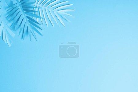 Foto de Blue minimalistic paper cut palm leaves on blue background with copy space - Imagen libre de derechos