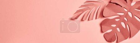 Photo pour Coup panoramique des feuilles décoratives de palmier coupées en papier sur le fond rose - image libre de droit
