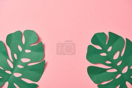 Foto de Vista superior de hojas de palma verde sobre fondo rosa con espacio de copia - Imagen libre de derechos