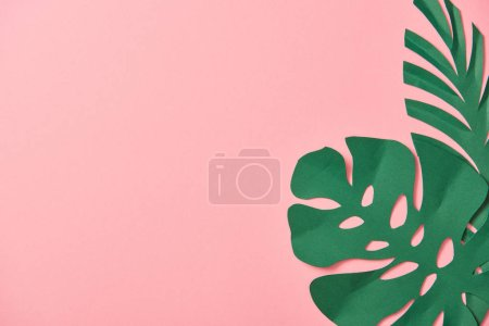 Foto de Top view of green palm leaves on pink background with copy space - Imagen libre de derechos