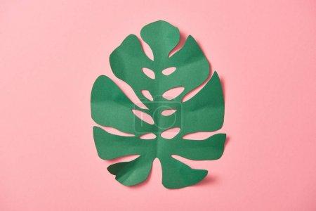 Foto de Vista superior de la hoja de palma verde sobre fondo rosa con espacio de copia - Imagen libre de derechos