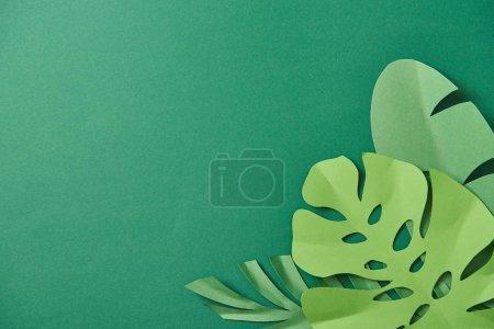 Photo pour Vue supérieure des feuilles de palmier coupées de papier exotique sur le fond vert avec l'espace de copie - image libre de droit