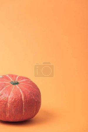 Photo pour Citrouille de saison mûre sur fond orange - image libre de droit