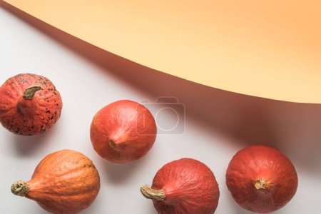 Photo for Top view of ripe pumpkins on white background with orange paper - Royalty Free Image
