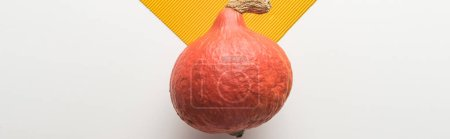 Photo for Top view of ripe pumpkin on white and orange background, panoramic shot - Royalty Free Image