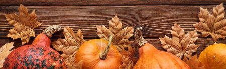Photo pour Coup panoramique de citrouilles sur une surface en bois brun avec des feuilles d'automne séchées - image libre de droit