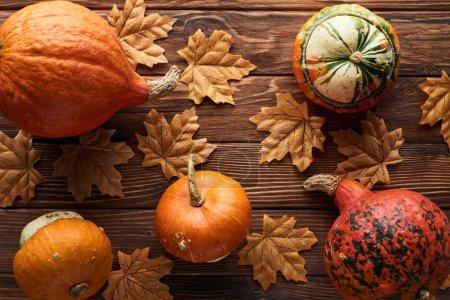Photo pour Vue de dessus des citrouilles mûres sur la surface en bois brun avec des feuilles d'automne sèches - image libre de droit