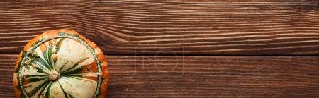 plano panorámico de pequeña calabaza madura sobre superficie de madera marrón con espacio de copia