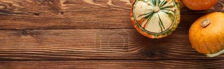 Photo pour Plan panoramique de petites citrouilles sur une surface en bois brun avec espace de copie - image libre de droit
