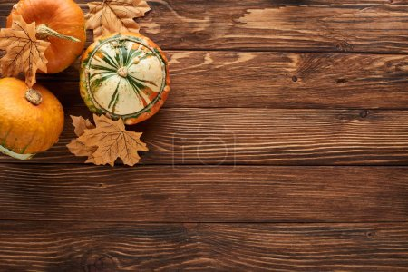 Photo for Top view of fresh pumpkins on brown wooden surface with dry leaves - Royalty Free Image