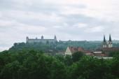 """Постер, картина, фотообои """"древние крепости Мариенберг и зеленые деревья в Вюрцбурге, Германия"""""""
