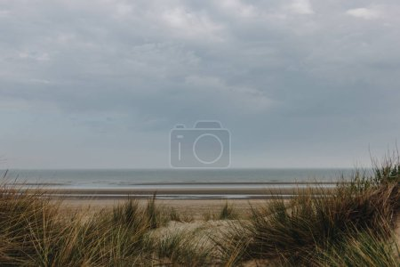 Photo for Dramatic shot of sandy seashore on cloudy day, Bray Dunes, France - Royalty Free Image