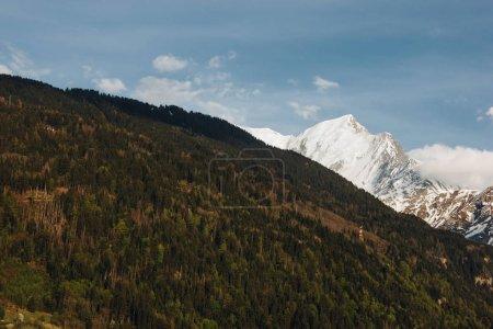 Photo pour Belle végétation verte et les pics enneigés des montagnes pittoresques, Mont-blanc, Alpes - image libre de droit