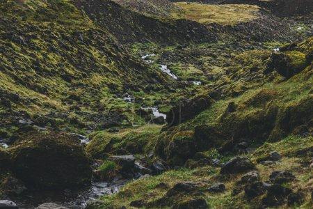 Photo pour Rochers mousseux sur prairie de montagne en Islande - image libre de droit