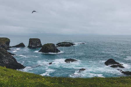 dramatic shot of rocks in blue ocean in Arnarstapi, Iceland with green meadow on background