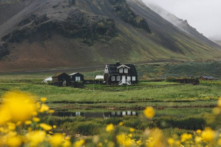Photo for Beautiful house on green hill in Iceland with yellow field flowers on foreground - Royalty Free Image