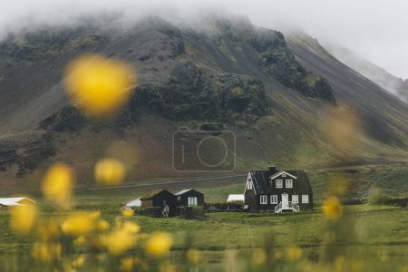 Photo for Lonely house on green hill in Iceland with yellow field flowers on foreground - Royalty Free Image